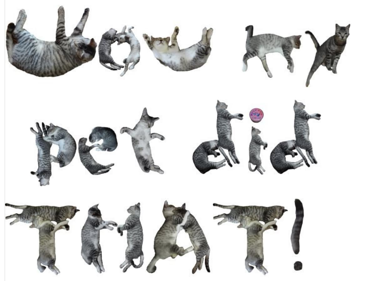 example of cat words