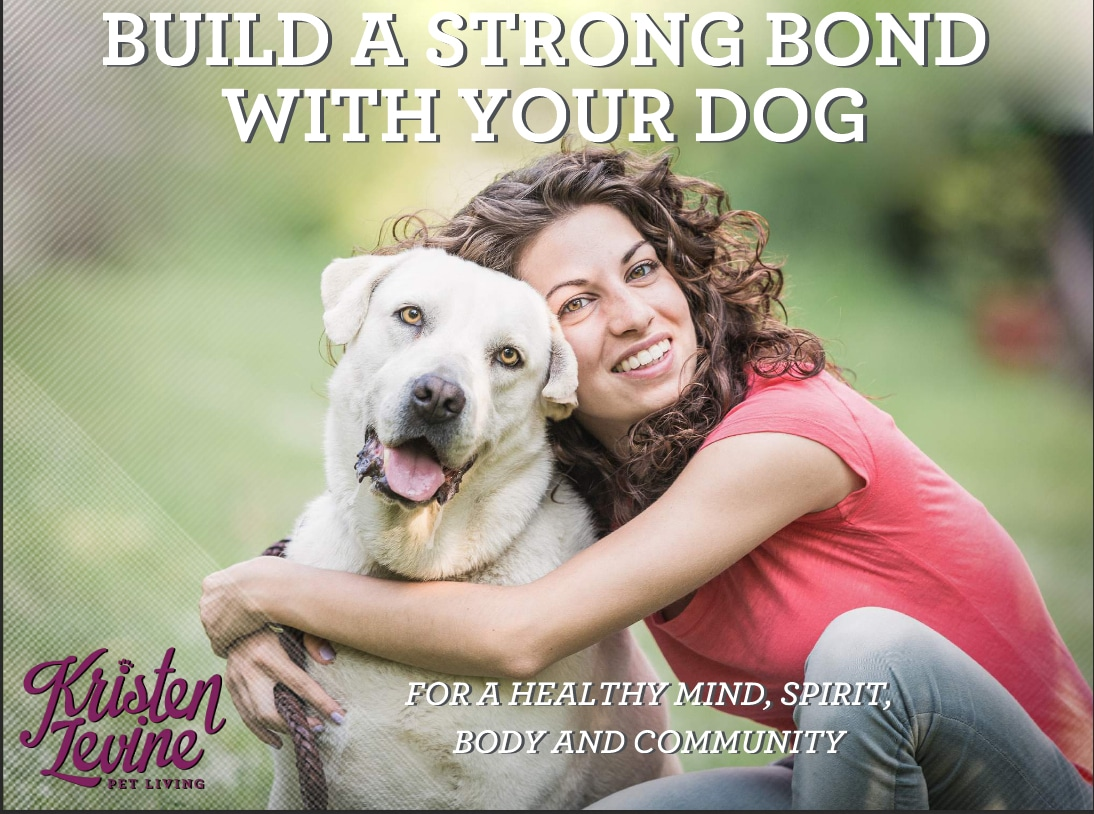 Free ebook explains how to build a better bond with your dog