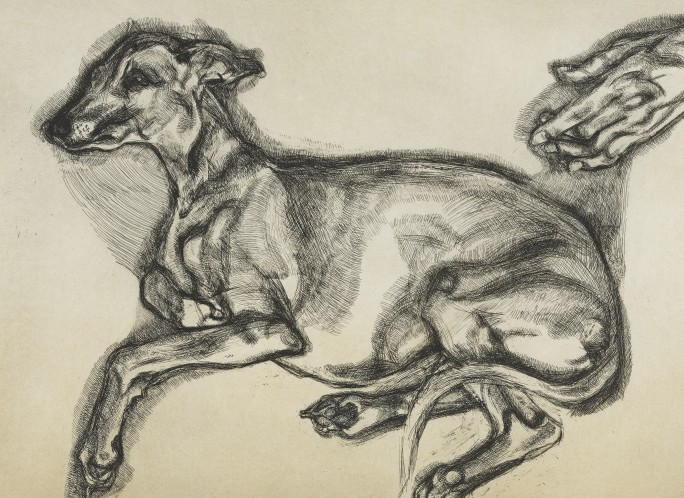 "Lucian Freud ""Pluto, aged 12"" etching"
