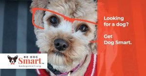 Be Dog Smart™ initiative offers information about responsible dog adoption and resources for new dog owners