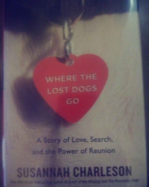 "Book recommendation: ""Where the Lost Dogs Go"""