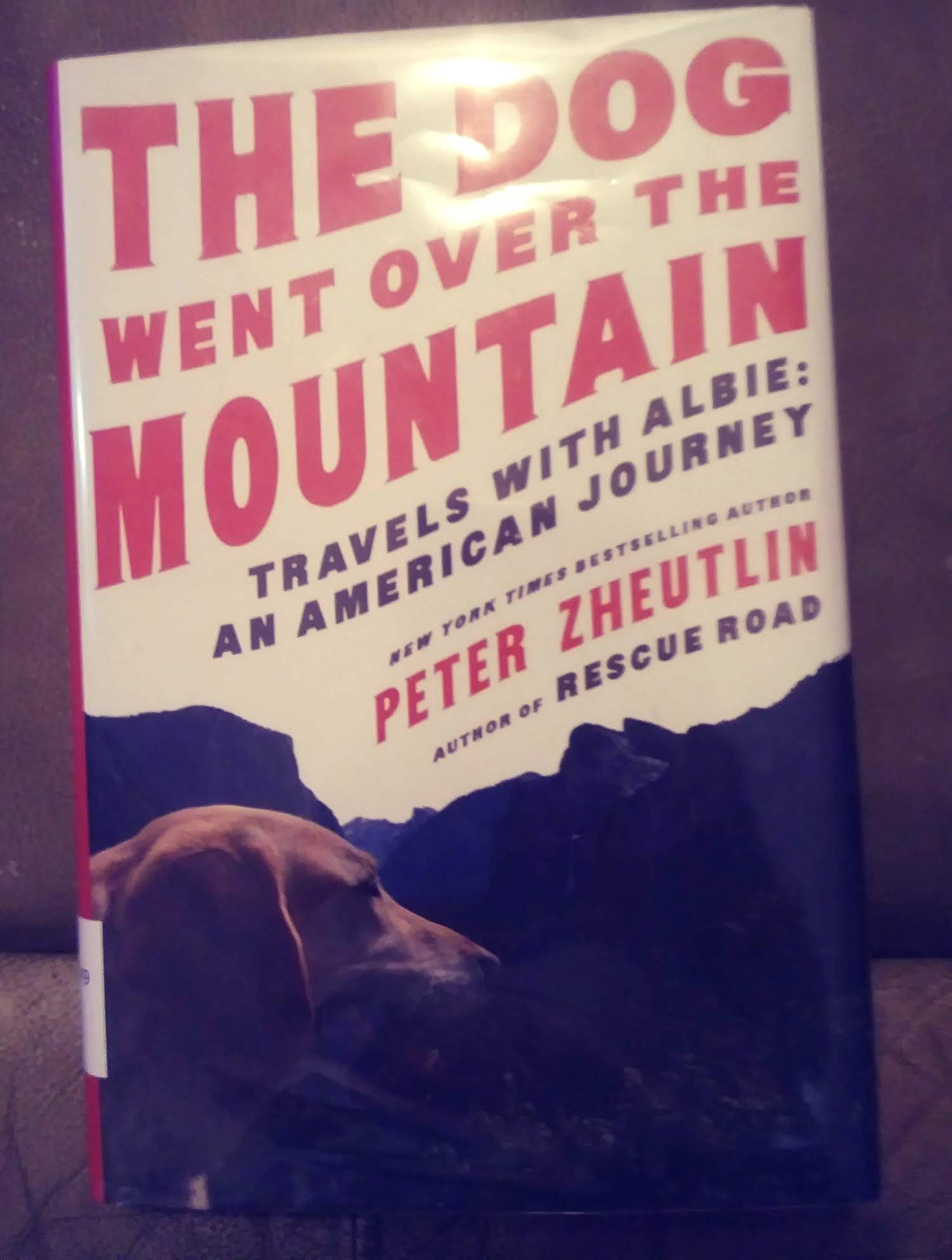 """Review of """"The Dog Went Over the Mountain"""""""