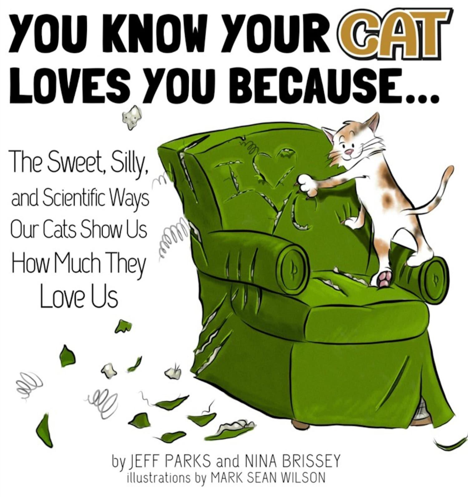 Wow, our cats really DO love us! A review of  'You Know Your Cat Loves You Because…'